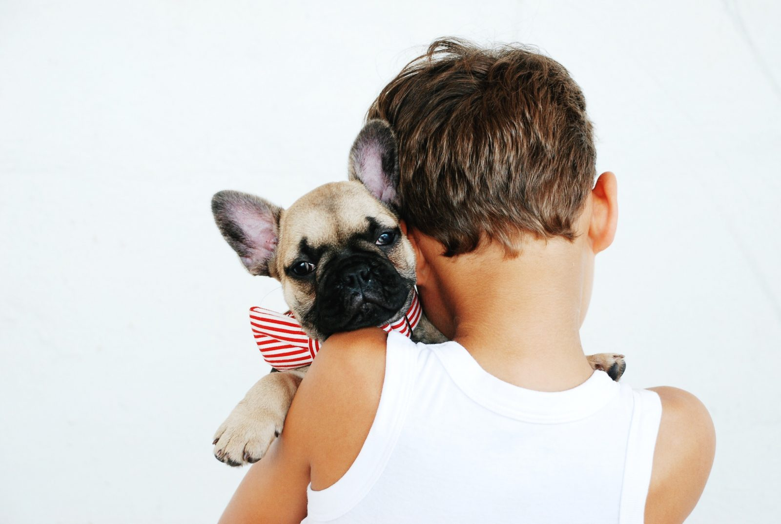 Pet dander is an allergy trigger.