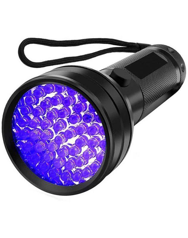 Bed Bug Light